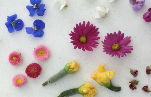 Tuin 9: 100 m2 met 100.000 bloemen