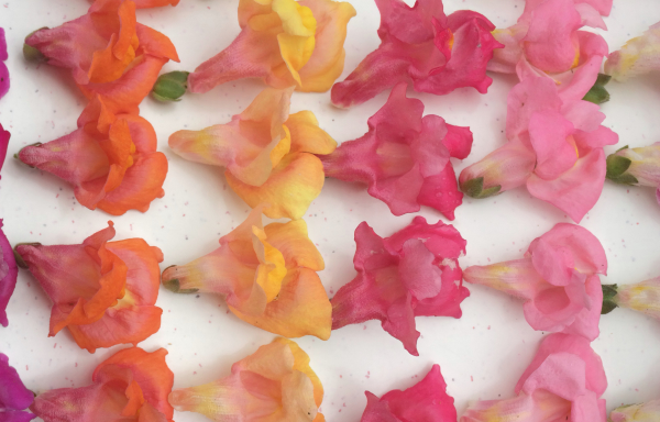 Tuin 1: 4 m2 met 7.500 bloemen